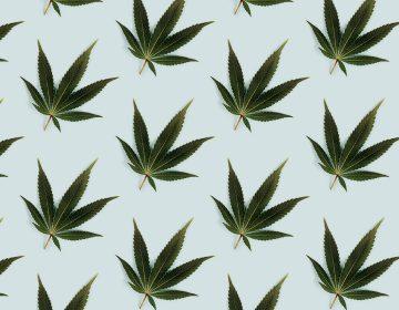 ¿La marihuana legal es buena para el negocio o para la sociedad?