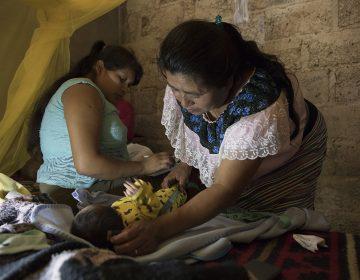 'Birth Wars': una campaña que visibiliza la partería tradicional en México