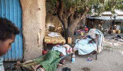 600 civiles masacrados… Aquí te explicamos qué sucedió en Tigray…