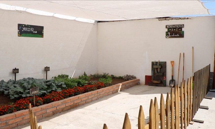 Crean primera azotea verde en el municipio de Jesús María