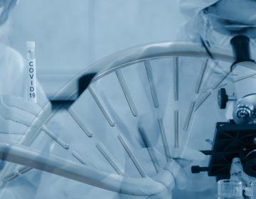 Científicos que investigaron el origen del COVID-19 viajarán a China en enero