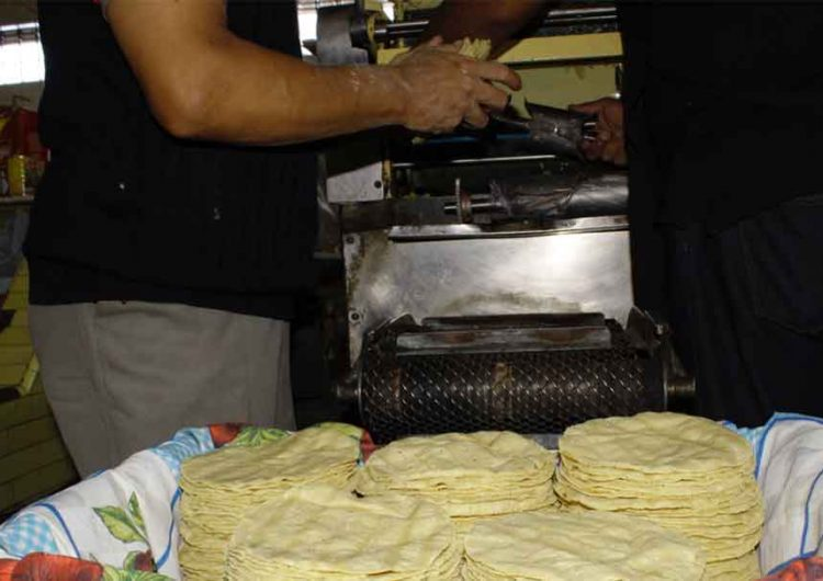 Diciembre sin aumento a la tortilla