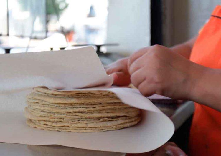 Podría aumentar precio de la tortilla un peso