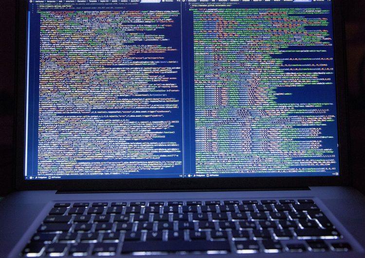 Red virtual más grande del mundo utilizada por ciberdelincuentes es eliminada