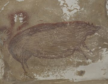Se descubre la pintura rupestre más antigua del mundo en Indonesia