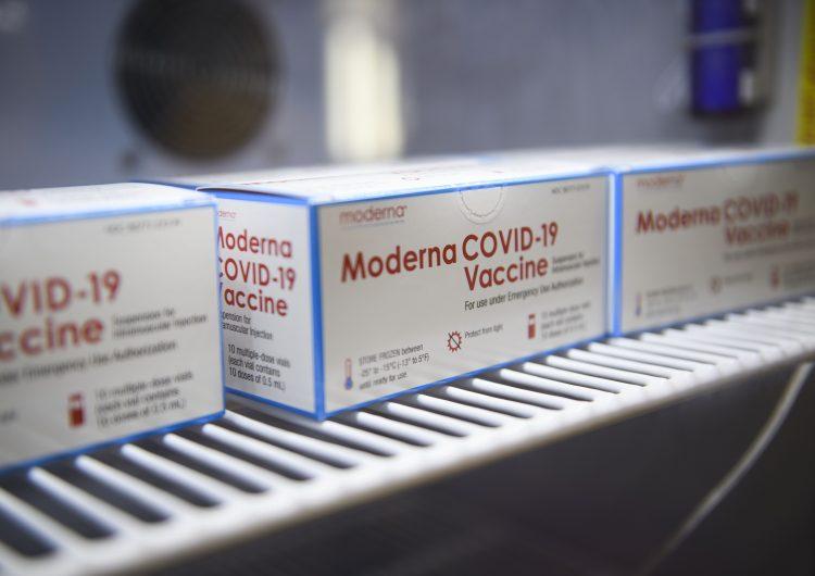 Segunda dosis de vacuna Moderna puede ser administrada hasta 42 días después de la primera: OMS