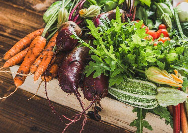 La lucha es por una alimentación saludable y consciente