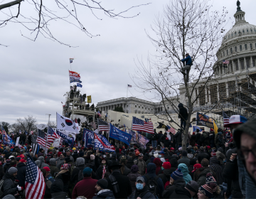 """Senadores exigen destitución de Trump: """"Es hora de poner fin a esta pesadilla"""""""