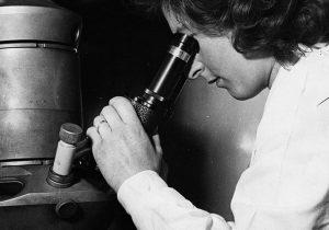 Cómo fue identificado el primer virus de la historia (y qué pasó después de su descubrimiento)