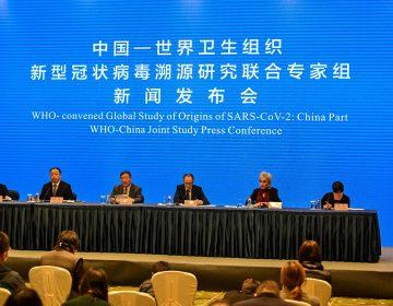 China negó el acceso a información de los primeros casos de COVID-19, dice científico de la OMS