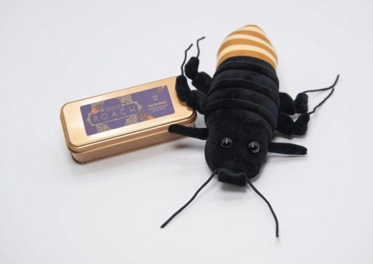Para San Valentín, nada dice amor como una cucaracha de Madagascar