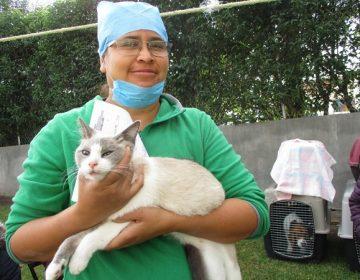 Inauguran primer hospital veterinario público en Aguascalientes; se ubica en Pabellón de Arteaga