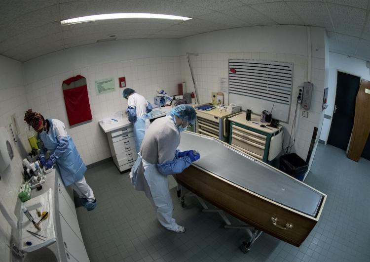 El COVID-19, una de las principales causas de muerte de 2020 a escala mundial