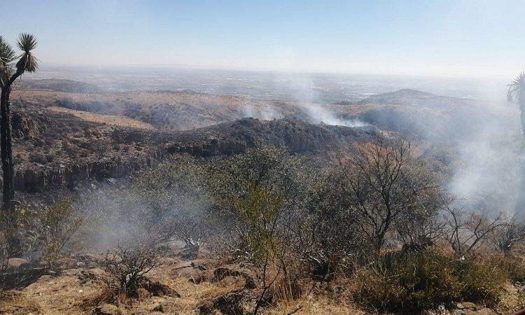 Tras dos días, sofocan incendio en Mesa de Pinos en Aguascalientes