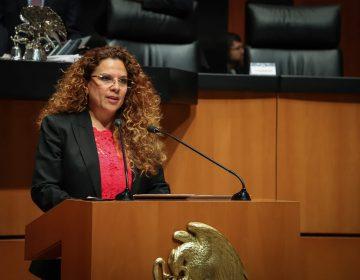 Es urgente un trato digno a las mascotas en riesgo de violencia: Rocío Abreu