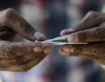 Cámara de Diputados aprueba legalizar la marihuana de uso recreativo