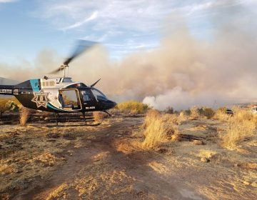 Incendio forestal en Jesús María deja más de 100 hectáreas siniestradas y bomberos con quemaduras