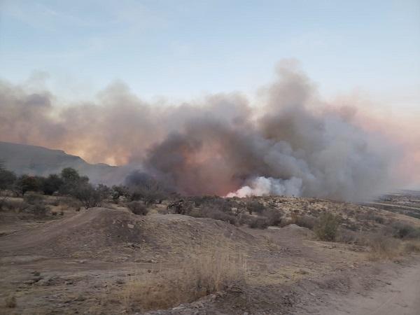 Fogata pudo haber provocado incendio forestal en Jesús María: CONAFOR
