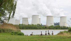 Alemania indemnizará con 2,400 millones de euros a empresas tras…