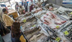Buen pescado para ti y el medioambiente: cómo comprar el…