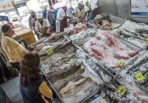 Buen pescado para ti y el medioambiente: cómo comprar el mejor