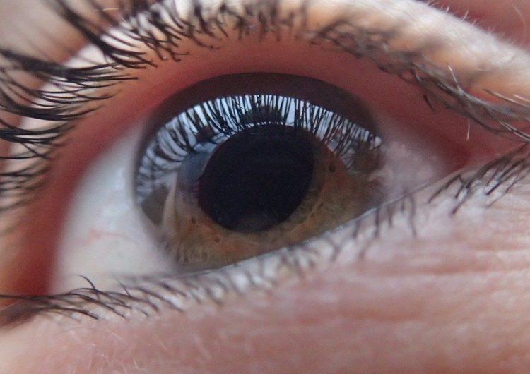 La inteligencia artificial revolucionará la detección temprana del glaucoma