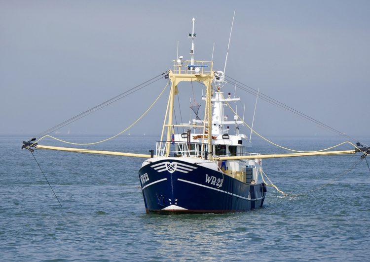 Pescadores llaman a crear conciencia ante el impacto de la pesca en la crisis climática