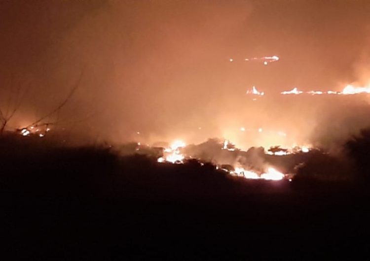 Sofocan incendio forestal en Jesús María