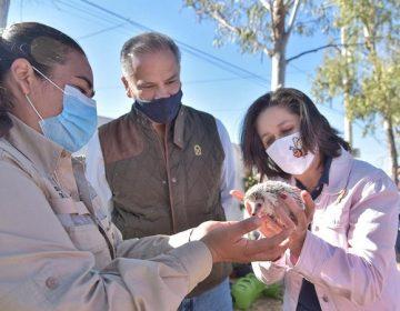 """Inauguran primer centro de educación ambiental """"Tlali"""" en Jesús María"""