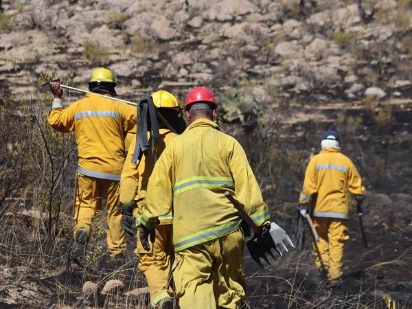 Piden bomberos estatales extremar precauciones para evitar incendios forestales