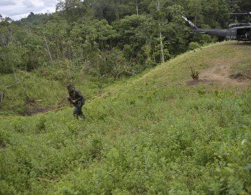 Encuentran cinco cuerpos de presuntos combatientes de las FARC en la frontera entre Colombia y Ecuador