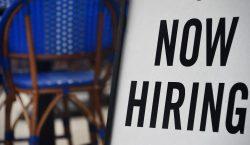 EU ofrecerá miles de visas de trabajo temporal, 6,000 destinadas…