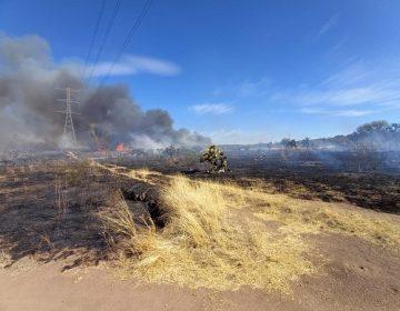 Sofocan incendio forestal en predios aledaños a la carretera a Loreto