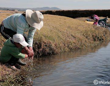 Millones de personas, en el límite de la sobrevivencia por cambio climático: World Vision