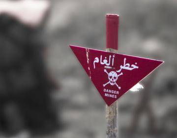 En todo el mundo proliferan minas terrestres y explosivos de guerra capaces de matar a comunidades enteras: ONU