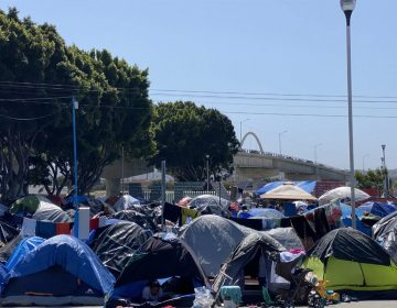 En busca del 'sueño americano': cuatro migrantes del campamento de Tijuana cuenta sus historias
