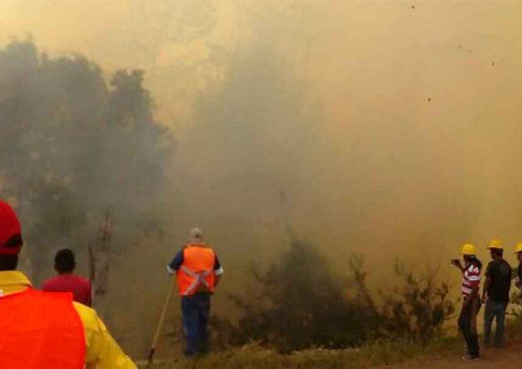Tras cuatro días controlan incendio forestal en Tochimiltzingo, Puebla