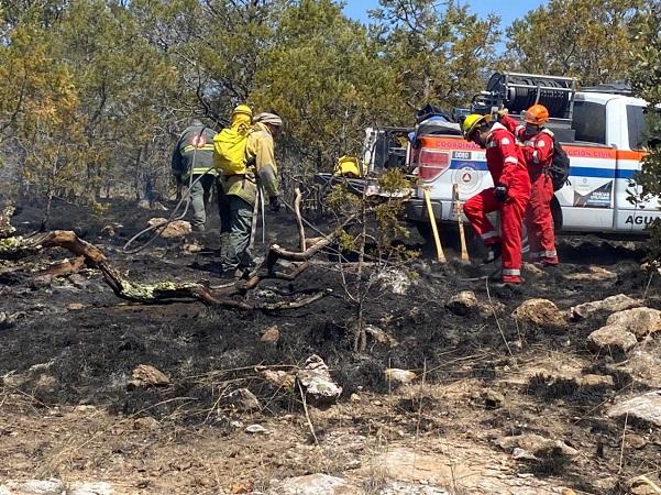 Sofocan incendio forestal en la Sierra Fría; consumió más de 4 hectáreas