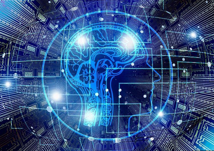 Derechos del cerebro: apuesta pionera de Chile para legislar a favor de la integridad física y psíquica
