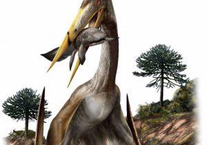Así sostenían sus cuellos los reptiles voladores más grandes del mundo
