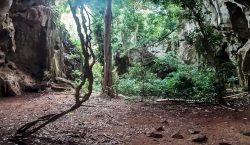 Descubren el entierro humano más antiguo de África