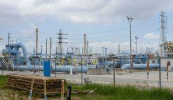 Compras de pánico de gasolina en EU tras ataque cibernético…