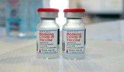 Vacunas Pfizer y Moderna, 'altamente' efectivas contra variantes de covid-19…