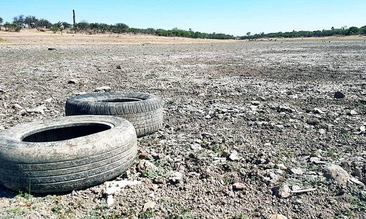 """""""Hace dos meses se secó la presa"""": los estragos de la sequía en Aguascalientes"""
