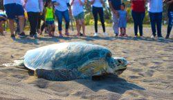 El compromiso de Nuvoil para salvar de la extinción a…