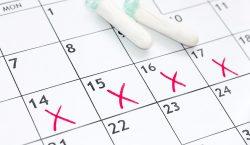 Menstruación pone en la agenda los derechos sexuales de niñas…