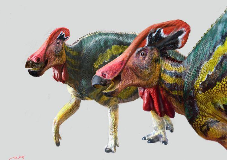 Paleontólogos descubren nueva especie de dinosaurio 'parlanchín' en México