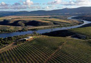 'Traumático incidente': explosión produce un río de vino tinto