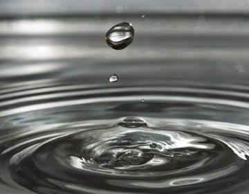 El ayuntamiento volverá a hacerse cargo del servicio de agua potable: Leo Montañez