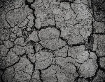 En sequía severa el 47% del territorio de Aguascalientes: CONAGUA